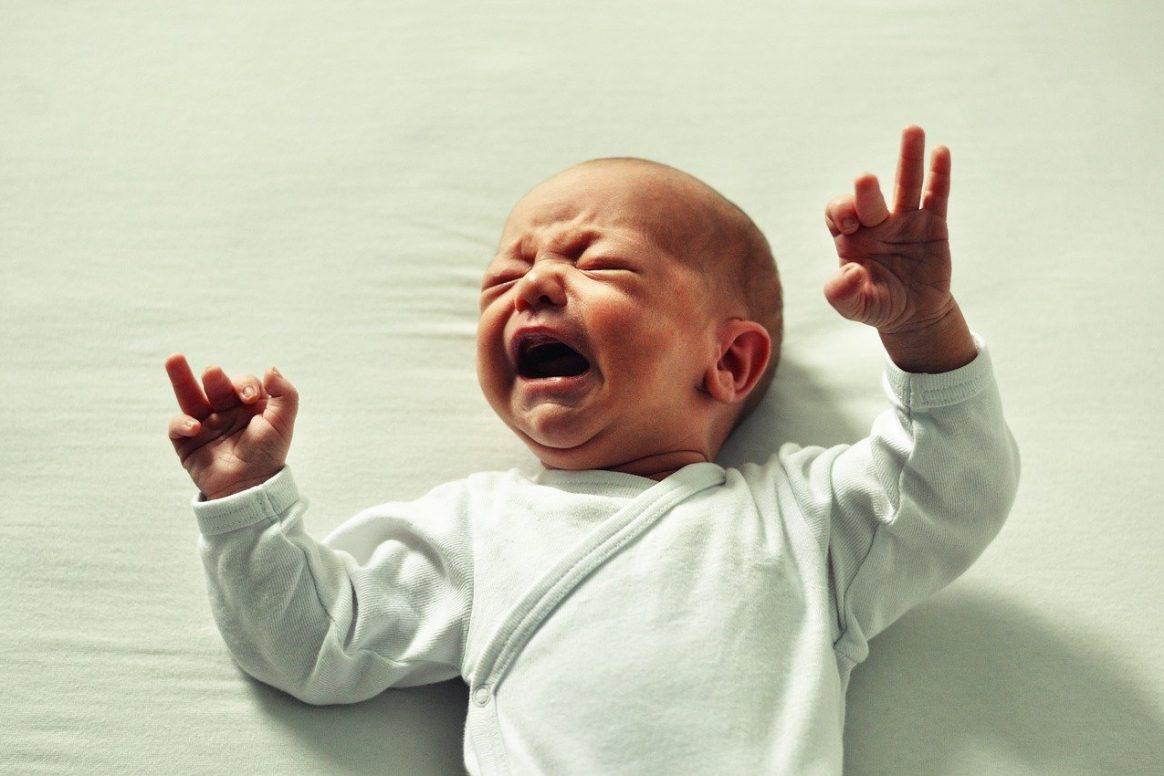 bojkot kojeni